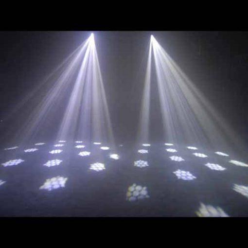 LED-GF50-LED-CHEETAH-WHITE.jpg